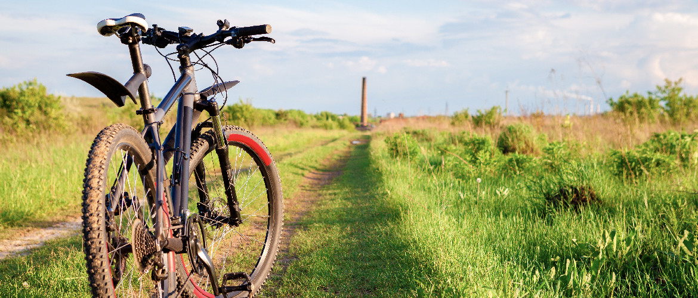 spatbord mountainbike