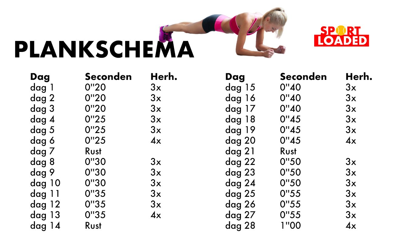 plankschema